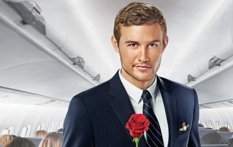 Which Bachelor Contestant Are You?