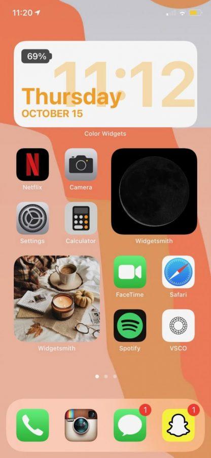 Warm fall colors help Danielle Villani's iPhone calm and organized vibes
