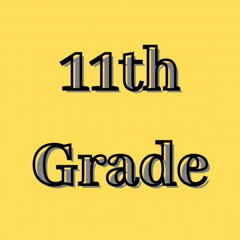 11th Grade Student Organization Elections