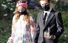 Harry Styles and Olivia Wilde Dating Rumors: DEBUNKED