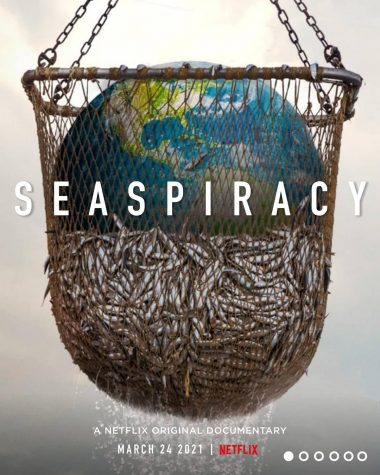 Seaspiracy: Has Ali Tabrizi truly helped to awaken humanity to the risks put into our ecosystem? Or has he wasted nearly an hour of your time?